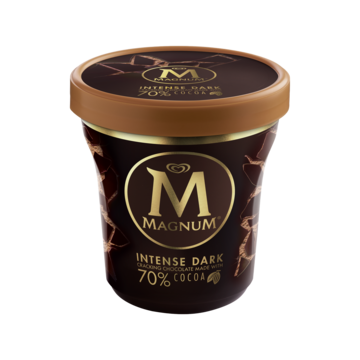 Magnum Pint Intense Dark Pint 440ml